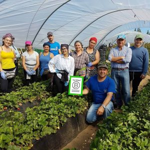 bcorp agricultura